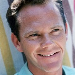 Dick Sargent Image