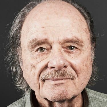 Harris Yulin Image