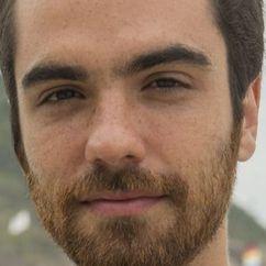 Bernardo Marinho Image