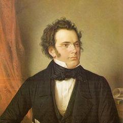 Franz Schubert Image