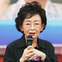 Kim Soo-hyun Image