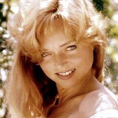 Yvette Vickers Image