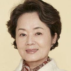 Kim Young-ae Image