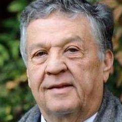 Renato Pozzetto Image