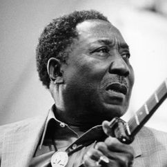 Muddy Waters Image