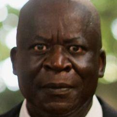 Pascal N'Zonzi Image
