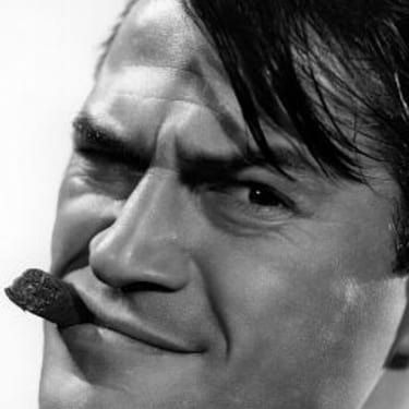 Larry Storch Image