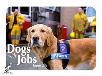 Dogs with Jobs Poster