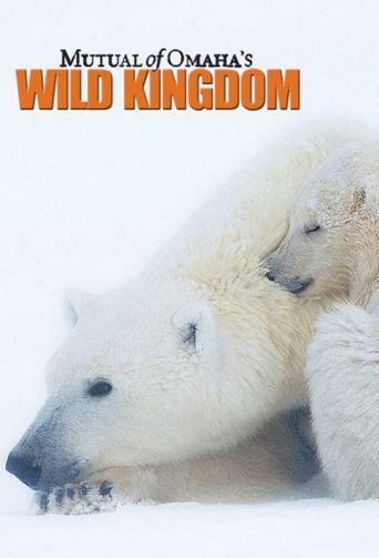 Wild Kingdom Poster