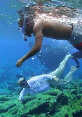 Sea of Hope: America's Underwater Treasures | National Geographic Poster
