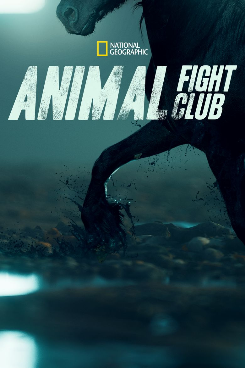 Animal Fight Night Poster