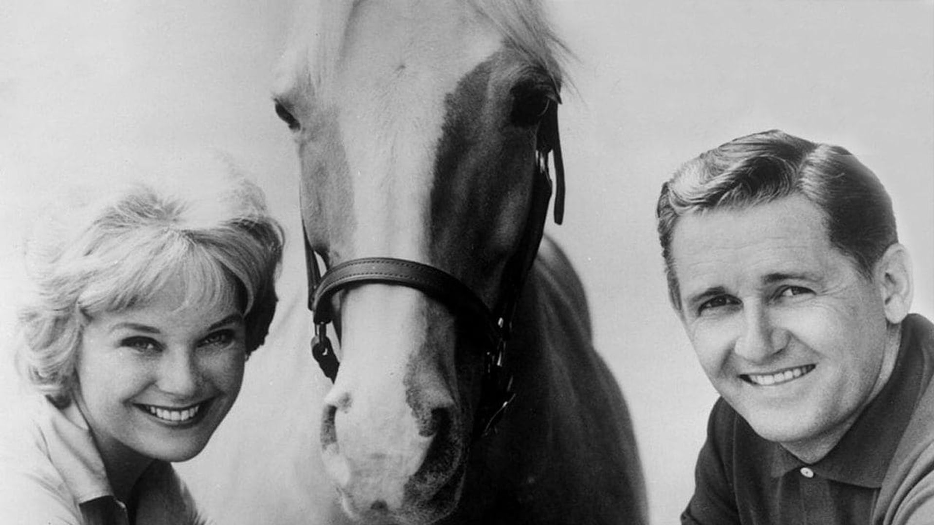 Mister Ed  – SE1 – Ep5 – Stable for Three
