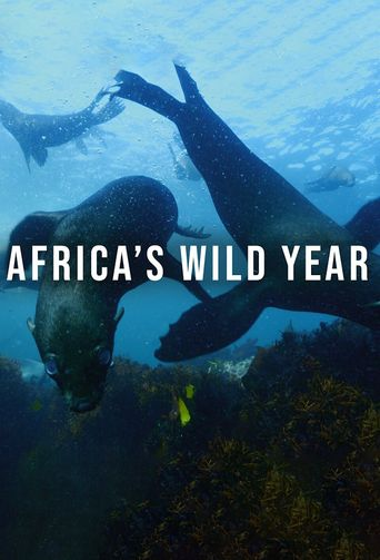 Africa's Wild Year Poster