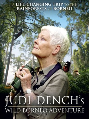 Judi Dench's Wild Borneo Adventure Poster
