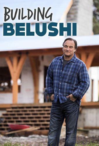 Building Belushi Poster