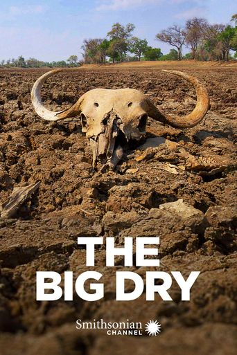 The Big Dry Poster