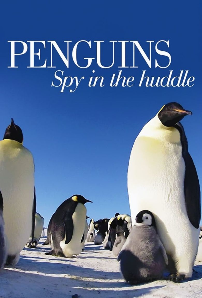 Penguins: Spy in the Huddle Poster