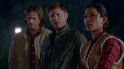 Season 08, Episode 14 Trial and Error
