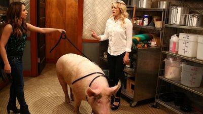 Season 04, Episode 04 Young & Piggy
