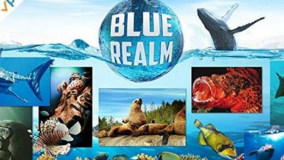 Season 01, Episode 03 Blue realm: Manatees and Dugongs