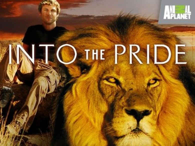 Into The Pride Poster