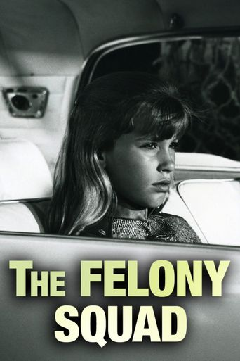 Felony Squad Poster