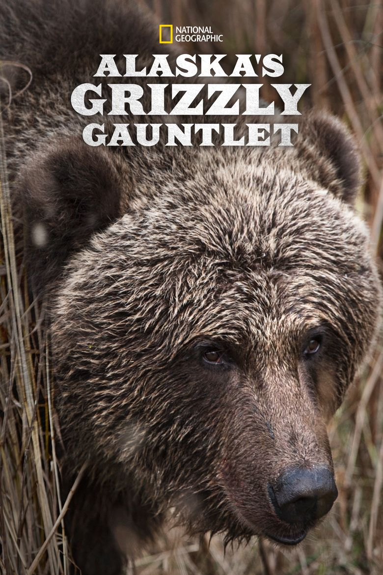Alaska's Grizzly Gauntlet Poster