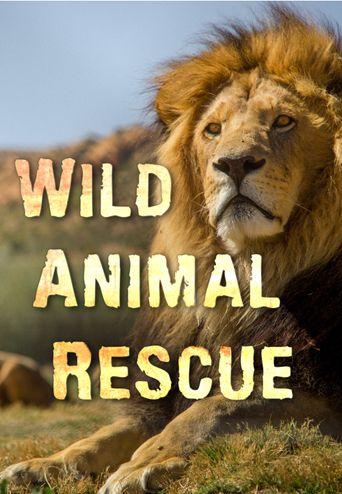 Wild Animal Rescue Poster