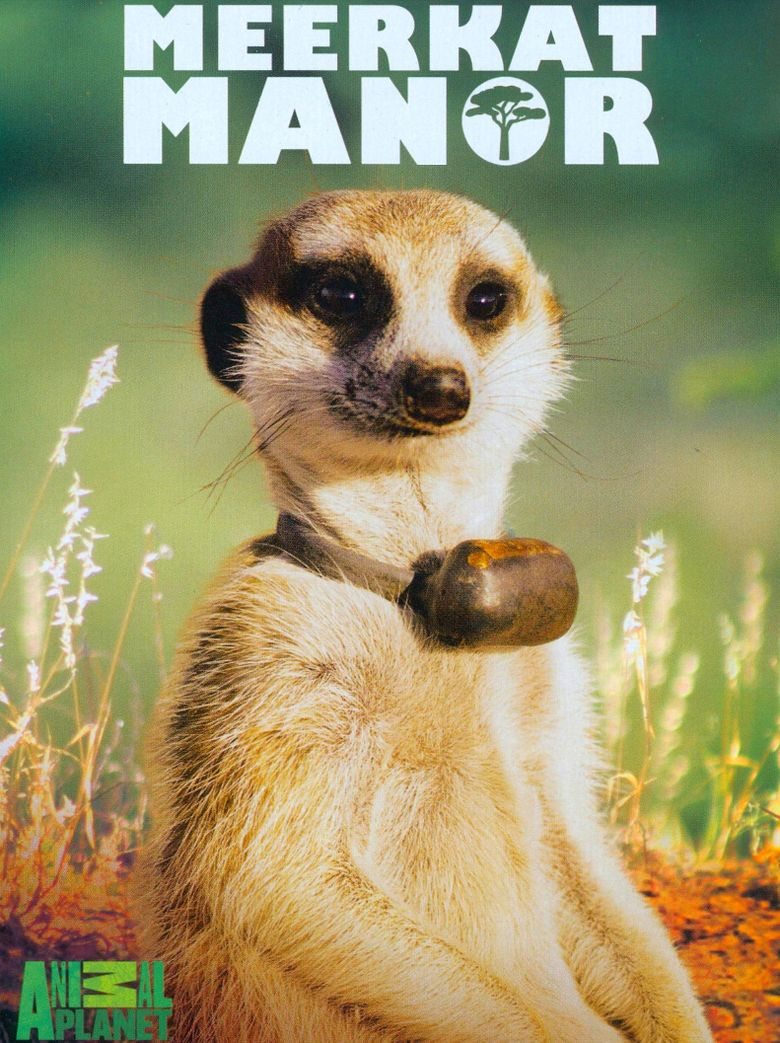 Meerkat Manor Poster