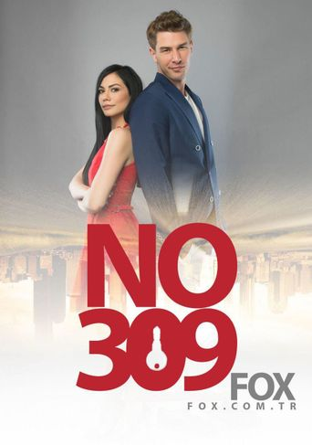 No: 3.0.9 Poster
