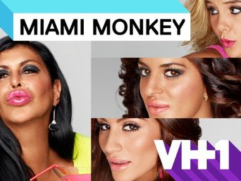 Miami Monkey Poster