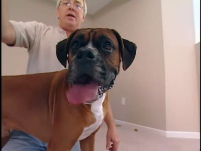 Season 04, Episode 06 Pet Love
