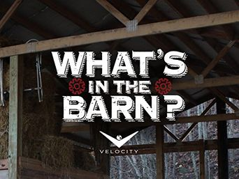 What's in the Barn? Poster