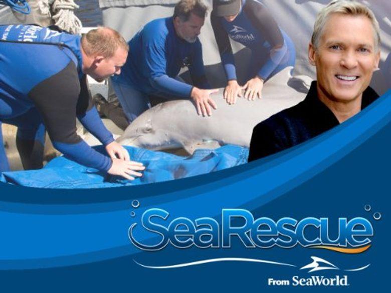 Sea Rescue Poster