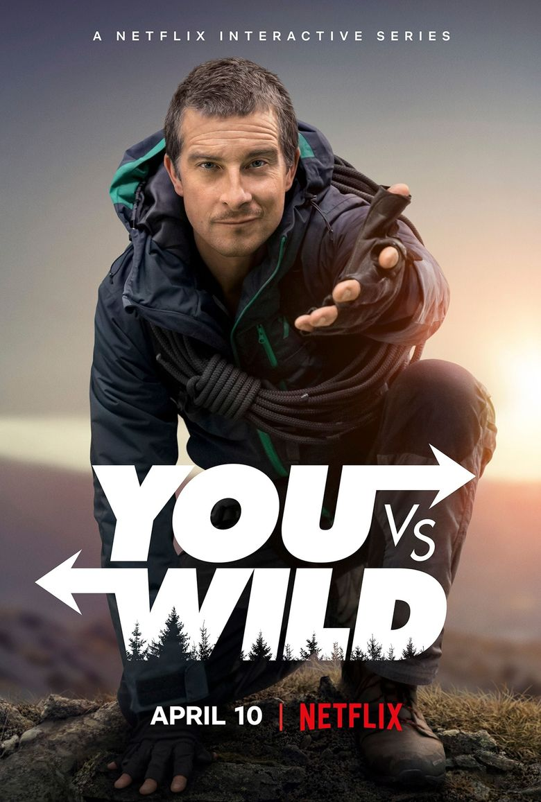 You vs. Wild Poster