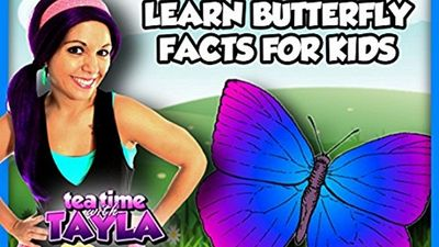 Watch SHOW TITLE Season 04 Episode 04 Learn Butterfly Facts for Kids on Tea Time with Tayla