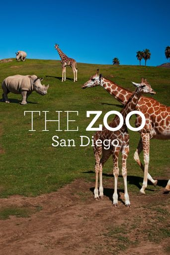 The Zoo: San Diego Poster