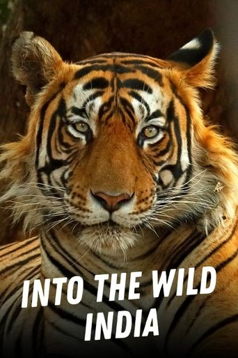 Into the Wild: India Poster
