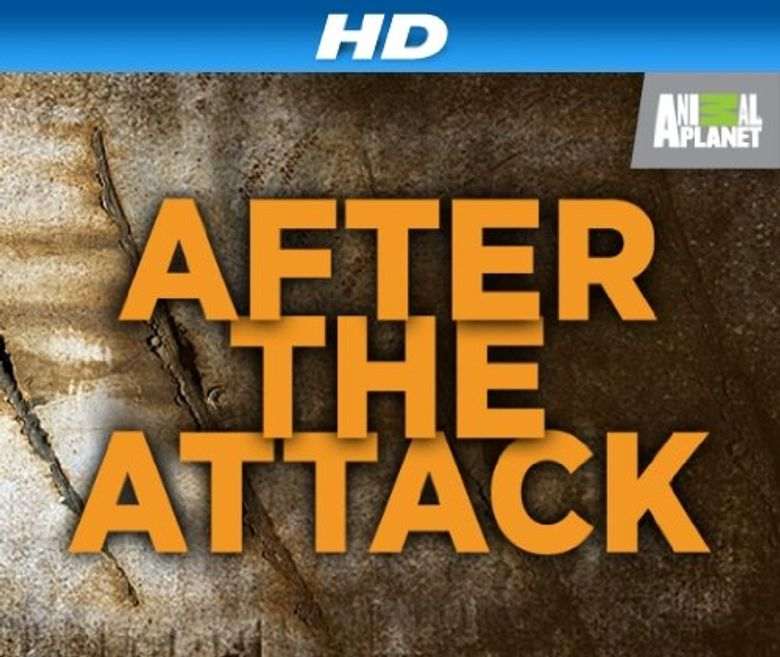 After the Attack Poster