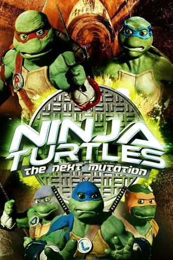 Ninja Turtles: The Next Mutation Poster