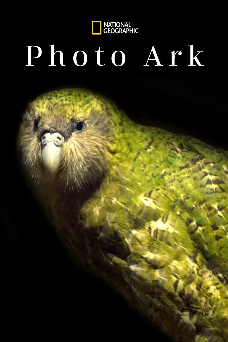 Rare: Creatures of the Photo Ark Poster