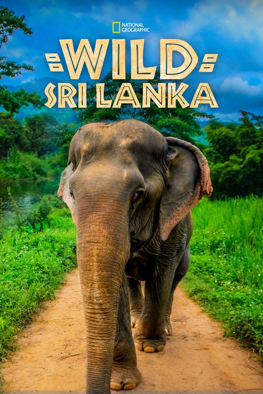 Wild Sri Lanka Poster