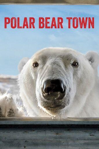 Polar Bear Town Poster