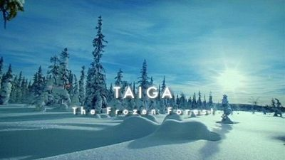 Watch SHOW TITLE Season 01 Episode 01 Taiga: The Frozen Forests