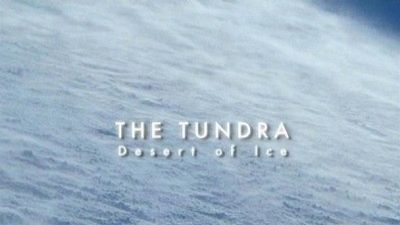 Watch SHOW TITLE Season 01 Episode 01 Tundra: Desert of Ice