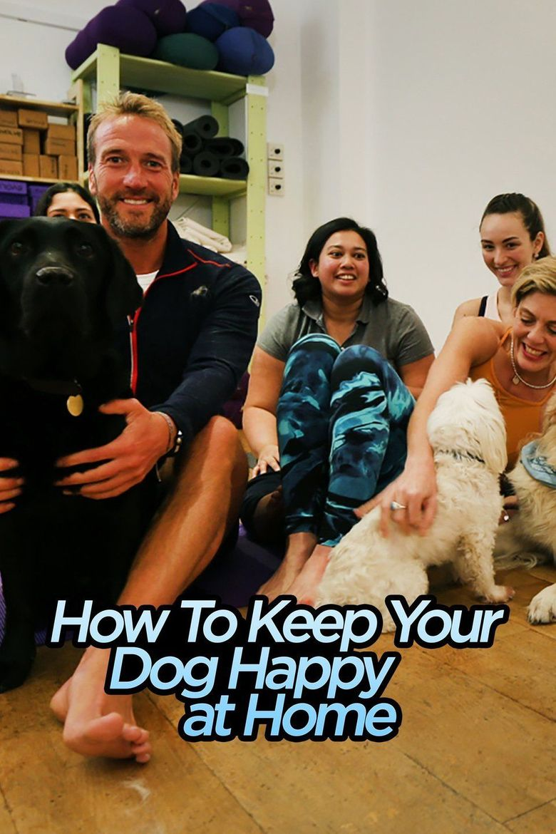 How to Keep Your Dog Happy at Home Poster