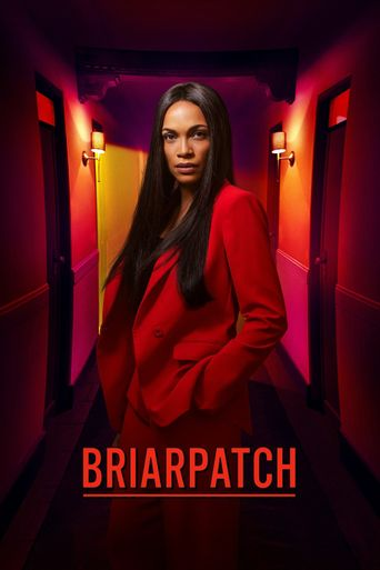 Briarpatch Poster