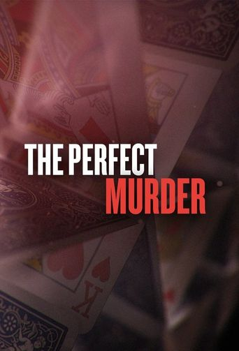 Watch The Perfect Murder