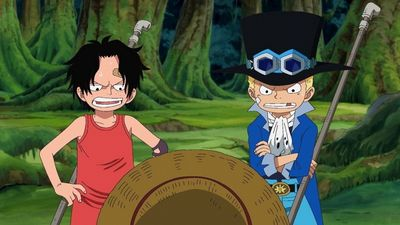 One Piece Season 14: Where To Watch Every Episode   Reelgood