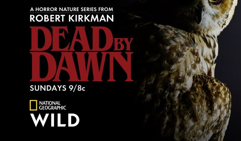 Dead By Dawn Poster